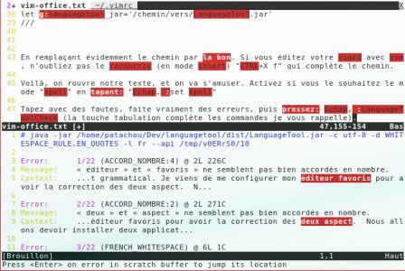 vim et LanguageTool