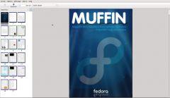 Muffin-01