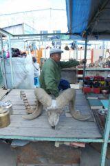 mongolie002.jpg