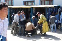 mongolie004.jpg